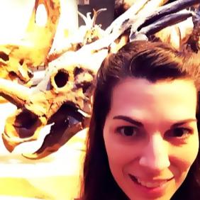 Triceratops Profile - Rebecca DeLozier